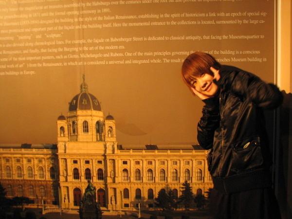維也納藝術史博物館的簡介