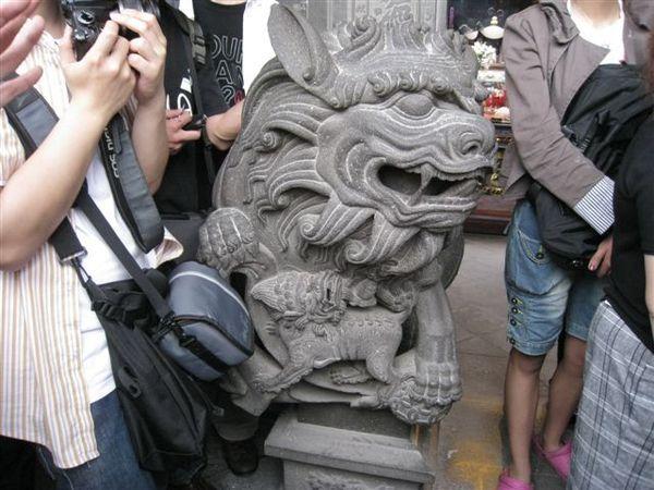 IMG_1345 有帶著小獅子的是母獅