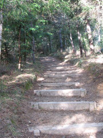 20071124_ 慢慢向上爬, 這裡路還很好走