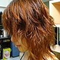 20080626染髮後側面剛吹乾
