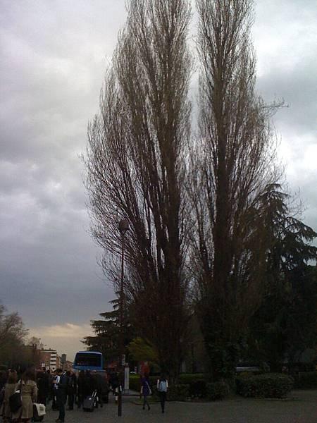 2011波隆那手機 282.jpg