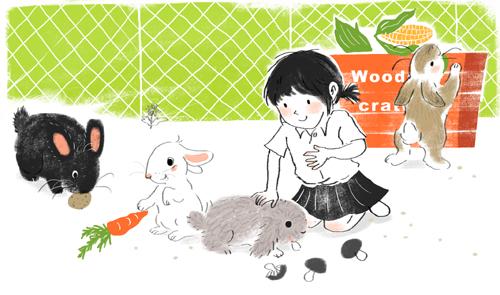 盈帆畫兔子