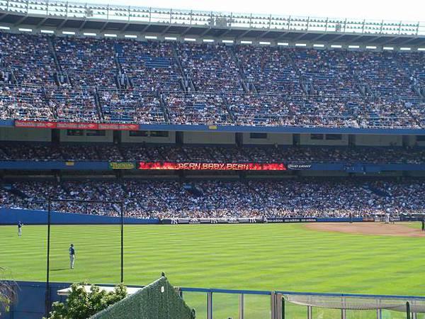 Yankee 1 (4).JPG