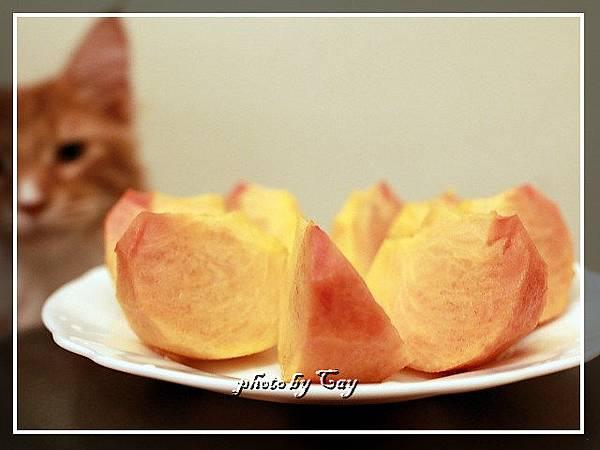 PhotoCap_111108 孟臻家的甜柿 015.jpg