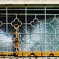 cb6688兒時回憶老鐵窗42花型4.jpg