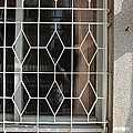 cb6688兒時回憶老鐵窗46幾何菱形3.jpg