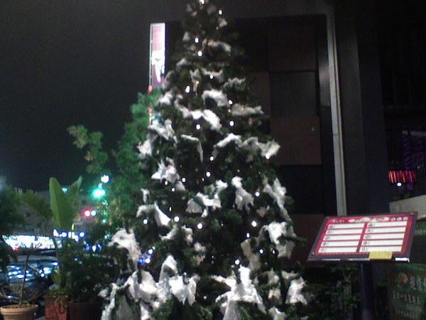 聖誕樹~好看