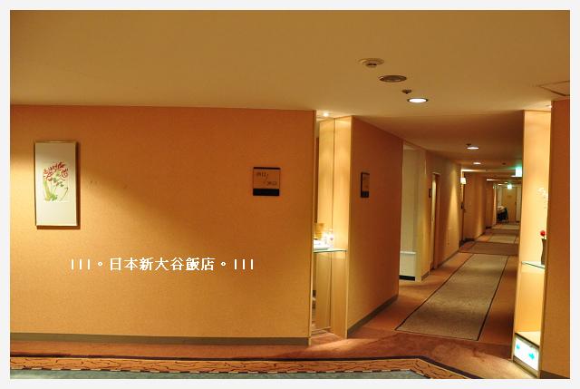 DSC_4905.JPG