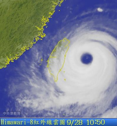 杜鵑颱風眼.png