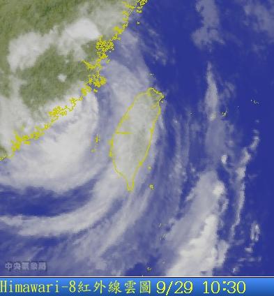 經過台灣被削弱的杜鵑.png