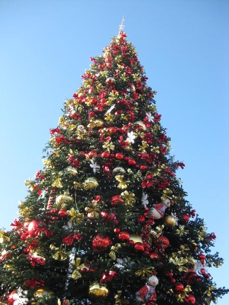 pier 39 xmas tree.JPG