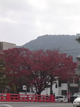 琵琶湖疏洪道