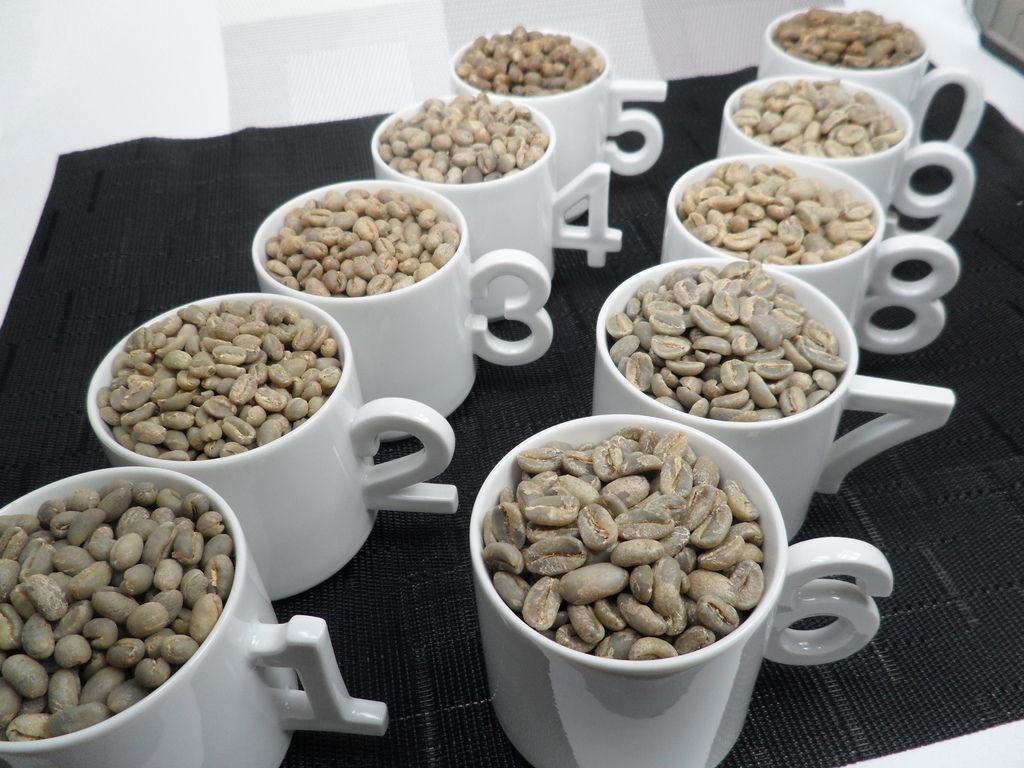 5圓豆 5長豆.JPG