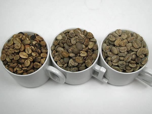 麝香貓咖啡 012