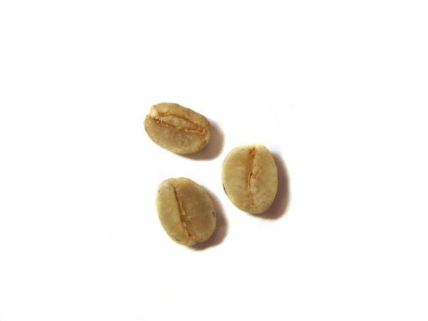 2-1發酵豆IMG_0007.JPG