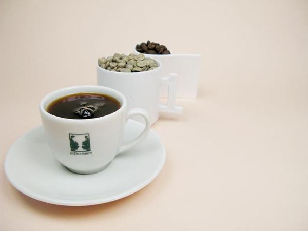 雙叟咖啡館紀念杯 X Honduras宏都拉斯