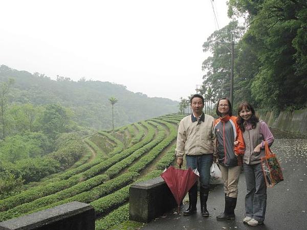 20094023桃園蘆竹鄉邱家咖啡園 (1)修.jpg