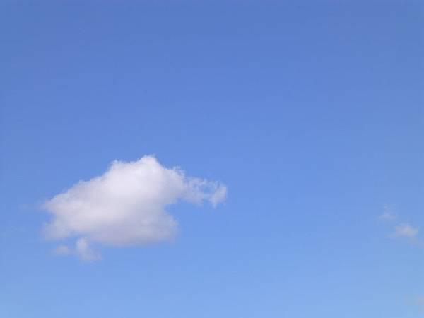 今天雲好白天好藍 013.jpg