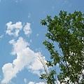 07,01,2004 - Sky~~