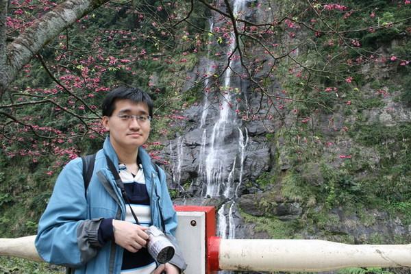 奇奇與櫻花、瀑布