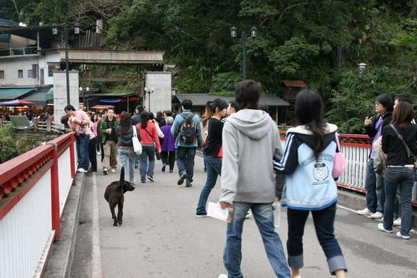 走環山路繞一大圈,終於回到老街
