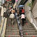 往纜車、環山路段賞櫻區