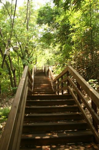 木棧道只有一小段