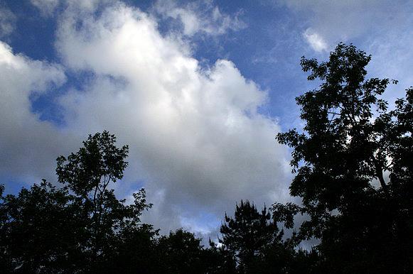 藍天呀~~~
