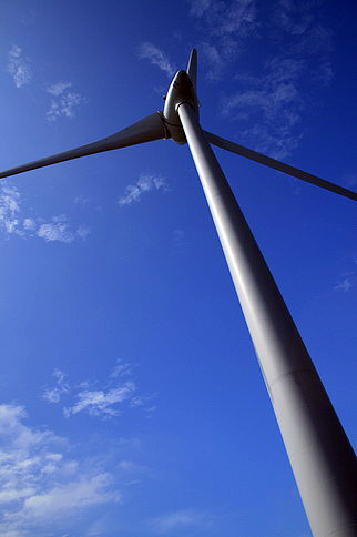 在風車底下拍