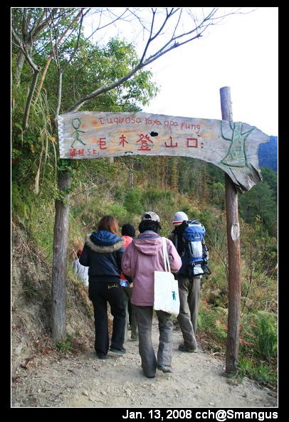 巨木群登山口