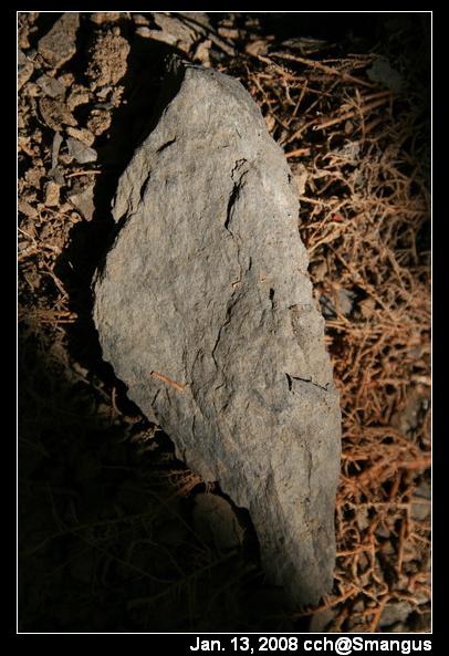 很像台灣的石頭