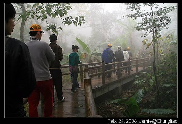 漫步濃霧中