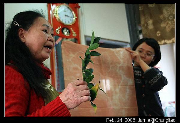 這是竹柏染的