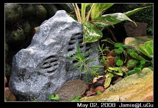 偽裝成石頭的音箱