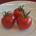 超誘人的蕃茄