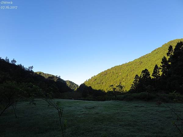 武陵農場.賞鳥步道