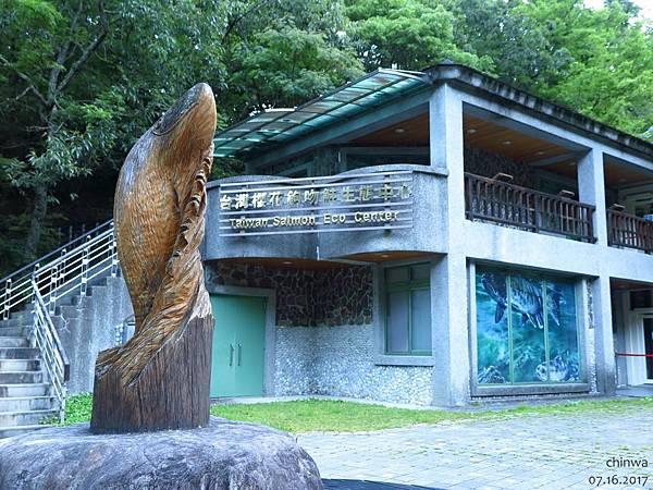 武陵農場.櫻花鉤吻鮭中心