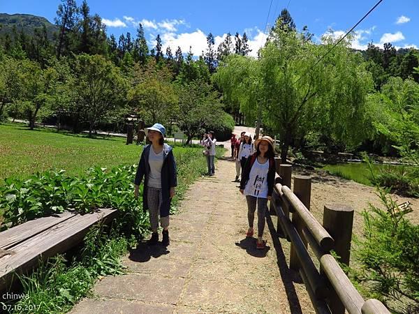 武陵農場.高山植物園