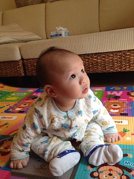 ▌5M▐  嬰兒進度大躍進 (爬行 + 坐)