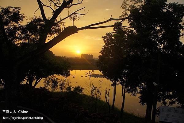 ▌嘉義▐ 看夕陽的好地方,蘭潭月影潭心