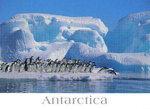 56南極洲.jpg