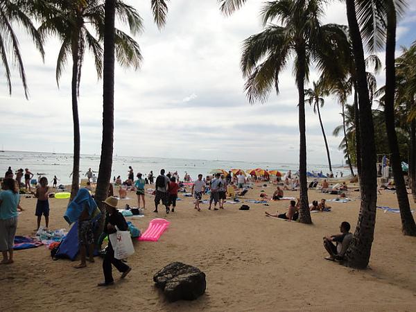抵達第一天看到的Waikiki海灘