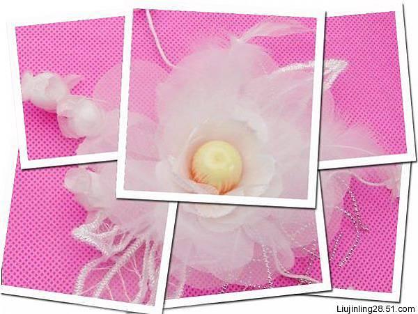 粉色背~1.JPG