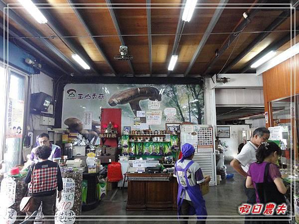 玉山香菇DSC05257.jpg