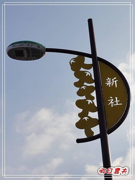 玉山香菇DSC05532.jpg