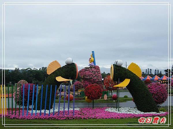 新社花海DSCF2554.jpg