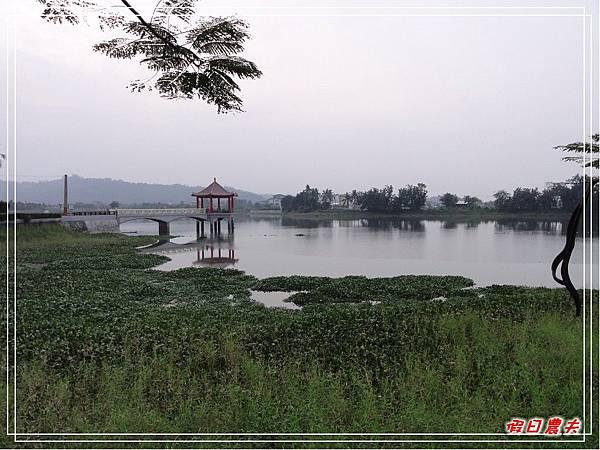 中正湖民宿DSC07518.jpg
