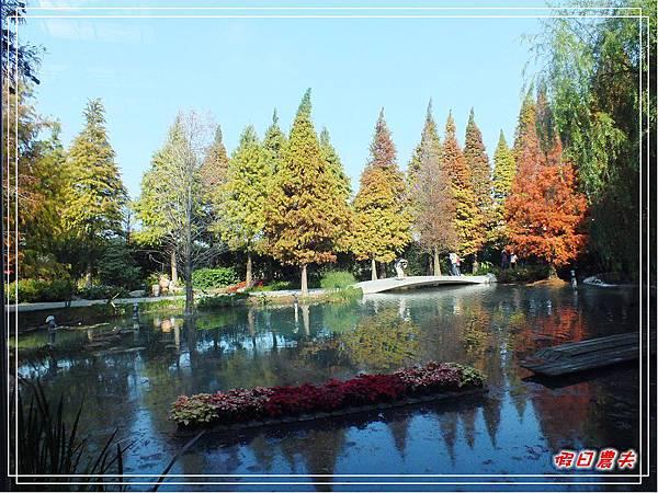 菁芳園DSCF4233.jpg