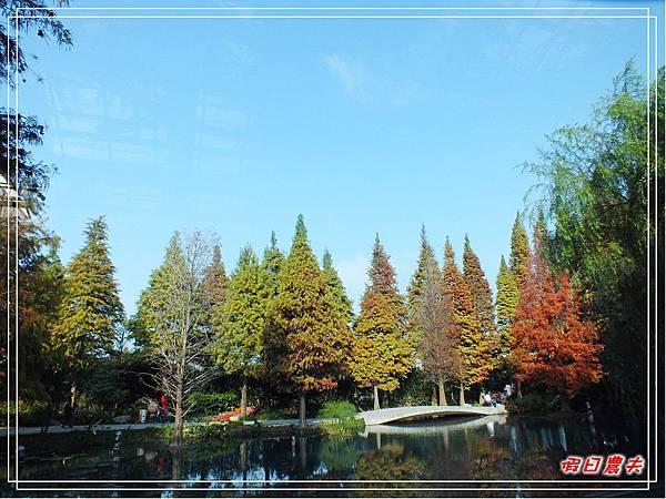 菁芳園DSCF4270.jpg