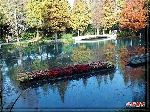 菁芳園DSCF4275.jpg